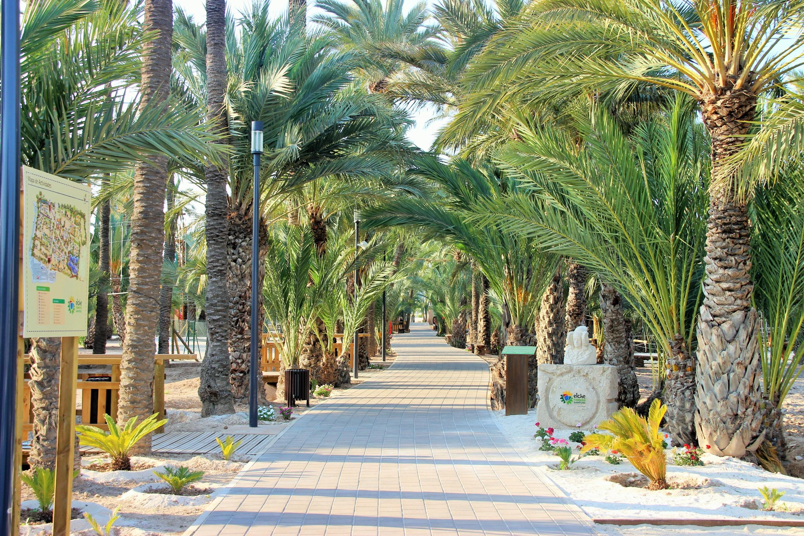 Multiaventura Elche – El paraíso dentro de los palmeras!