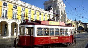 yellos bus tram hills tour