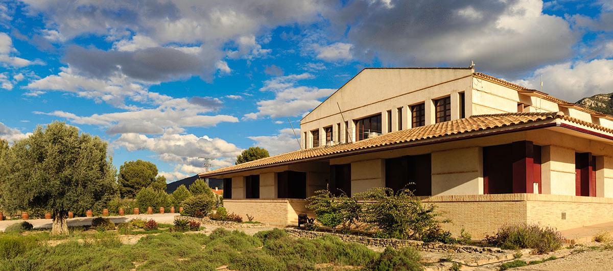 Bodega y vinedos casa de la ermita - Bodegas en casa ...